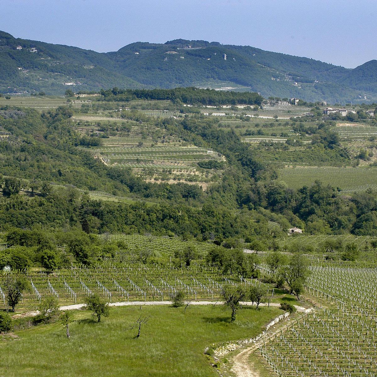 Valpolicella Lands